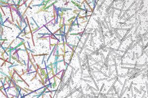 IPSDK三维智能图像处理与分析软件_CaxSoft_纤维智能分割对比3