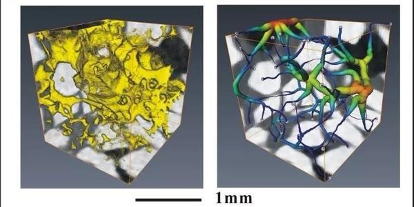 CT含水合物石英砂多参数观测   三维重建与计算